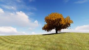 De herfst zingt 3D boom teruggeeft Royalty-vrije Stock Fotografie