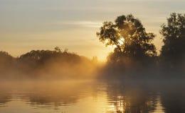De herfst zonsopgang op de rivier Stock Foto