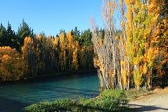 De herfst in Zuideneiland Nieuw Zeeland Stock Afbeeldingen