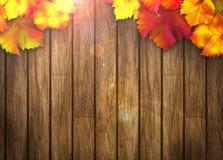 De herfstachtergrond Royalty-vrije Stock Foto