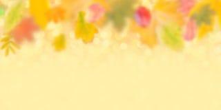 De herfstachtergrond 003 Stock Afbeelding