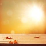 De herfstachtergrond Stock Foto's