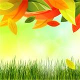 De herfstachtergrond met bladdaling en gras stock illustratie