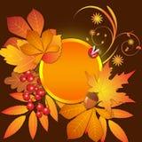 De herfstachtergrond met bladeren op bruin Stock Foto