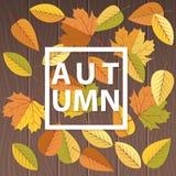 De herfstachtergrond met bladerenkader en exemplaarruimte in het centrum royalty-vrije illustratie