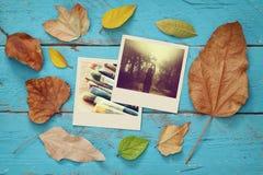 De herfstachtergrond met droge bladeren en oude fotokaders Royalty-vrije Stock Foto