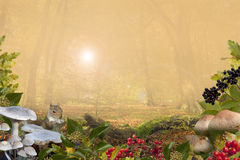 De herfstachtergrond met exemplaar-ruimte Royalty-vrije Stock Foto
