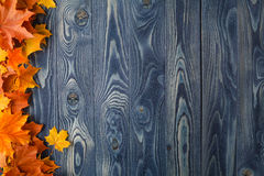 De herfstachtergrond met kleurenbladeren op blauwe raad Royalty-vrije Stock Fotografie