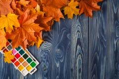 De herfstachtergrond met kleurenbladeren op blauwe raad Royalty-vrije Stock Afbeeldingen