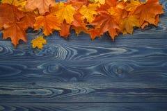 De herfstachtergrond met kleurenbladeren op blauwe raad Stock Foto's