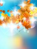 De herfstachtergrond met kleurrijke bladeren op blauw. Stock Foto's
