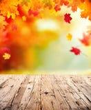 De herfstachtergrond met lege houten planken Stock Afbeeldingen