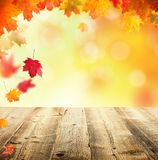 De herfstachtergrond met lege houten planken Royalty-vrije Stock Afbeelding