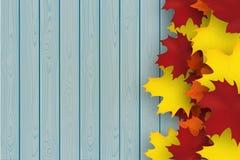 De herfstachtergrond met mapplebladeren en blauwe houten plank De vectorillustratie van het dalingsontwerp Lege ruimte voor uw te vector illustratie