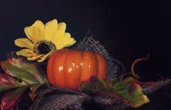 De herfstachtergrond met pompoen Royalty-vrije Stock Afbeeldingen