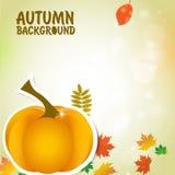 De herfstachtergrond met pompoenen en dalende bladeren Stock Foto
