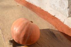 De herfstachtergrond met pompoenen op witte rustieke achtergrond, crac royalty-vrije stock foto's