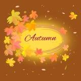 De herfstachtergrond met tekst Stock Foto