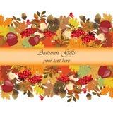 De herfstachtergrond met vruchten en bladeren Stock Foto