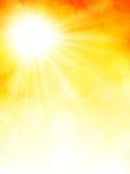 De herfstachtergrond met zon Stock Foto's
