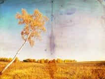 De herfstachtergrond van Grunge Stock Fotografie