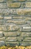 De herfstachtergrond van het metselwerk van de steentextuur royalty-vrije stock foto's