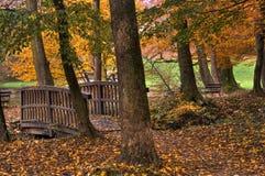 De herfstatmosfeer royalty-vrije stock foto