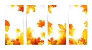 De herfstbanners met bladeren Stock Afbeeldingen