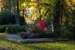 De herfstbegraafplaats Royalty-vrije Stock Afbeelding