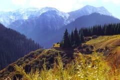 De herfstbergen in de stad van Alma Ata, Kazachstan Royalty-vrije Stock Foto