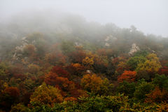 De herfstbergen in ochtendmist Stock Foto