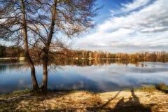De herfstbezinning over water stock afbeelding