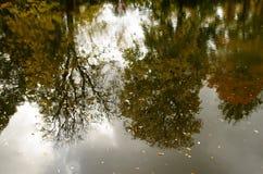 De herfstbezinningen, Gothenburg Zweden stock afbeelding