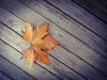De herfstblad op de houten lijst Stock Fotografie