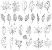 De herfstbladeren in contour stock illustratie