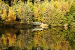 De herfstbladeren in de bomen worden weerspiegeld die Royalty-vrije Stock Foto