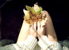 De herfstbladeren in de handen van Royalty-vrije Stock Foto