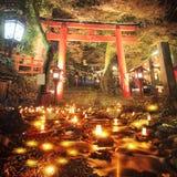 De herfstbladeren in de nacht stock foto