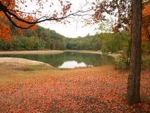 De herfstbladeren door kleine vijver Stock Foto's