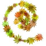 De herfstbladeren in een spiraal rooster Stock Foto