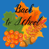 De herfstbladeren en bessen op een blauwe achtergrond Stock Fotografie