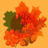De herfstbladeren en bessen op een blauwe achtergrond De herfstboeket Stock Foto