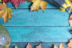 De herfstbladeren en gele en groene courgette op groenachtig blauwe houten achtergrond met exemplaarruimte stock foto's