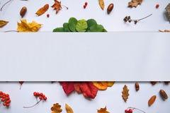 De herfstbladeren en plaats voor tekst royalty-vrije stock afbeelding