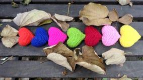 De herfstbladeren en valentijnskaartharten Stock Foto