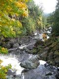 De herfstbladeren en wilde Canadese rivier stock fotografie