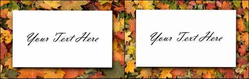 De herfstbladeren op bos Seizoengebonden achtergrond Vastgestelde inzameling Stock Foto
