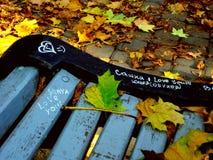 De herfstbladeren op de bank in een park stock afbeelding
