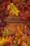 De herfstbladeren op de bruine houten lijst Stock Foto