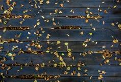 De herfstbladeren op de natte raad Stock Foto's
